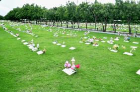 Floricultura Cemitério Parque da Saudade Caucaia - CE