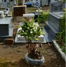 Floricultura cemitérios São Sebastião Ariquemes – RO