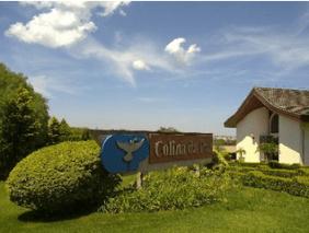 Floricultura Cemitério Colina da Paz Itapetininga – SP