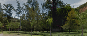 Floricultura Cemitério da Saudade Guaratinguetá – SP