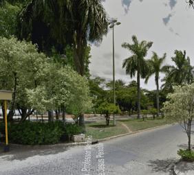 Floricultura Cemitério Parque Boa Vista Sete Lagoas – MG