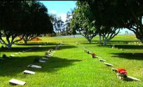 Floricultura Cemitério Memorial do Carmo - RJ