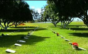 Floricultura Cemitério Parque Jardim Celestial Gravataí – RS