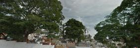 Floricultura Cemitério de Simões Filho - BA