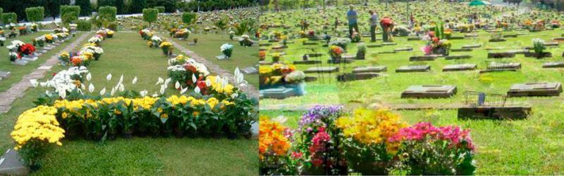 Cemitério Carmo