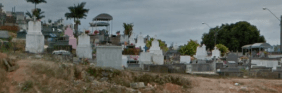 Floricultura Cemitério Municipal de Clementina - SP