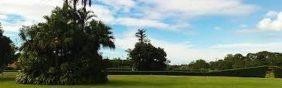 Floricultura  Cemitério dos Pioneiros Ji-Paraná - RO