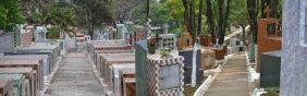 Floricultura Cemitério Municipal de Barra do Turvo - SP