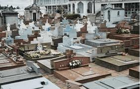 Floricultura Cemitério Jardim do Céu Pouso Alegre MG
