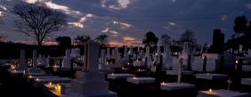 Floricultura Cemitério Japonês Álvares Machado - SP