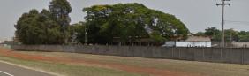 Floricultura Cemitério Municipal Papa João Paulo II Conchal – SP