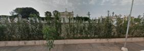 Floricultura Cemitério Municipal de Neves Paulista - SP