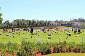 Floricultura Cemitério Memorial Jardim do Redentor de São José do Rio Pardo – SP
