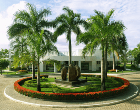 Floricultura Cemitério Parque Colina da Saudade Aracaju – SE