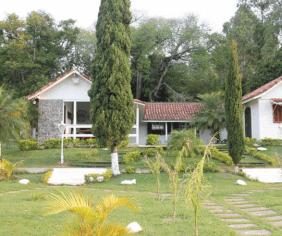 Floricultura Cemitério Municipal De Sarapuí – SP