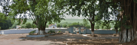 Floricultura Cemitério Municipal Terra Roxa - SP