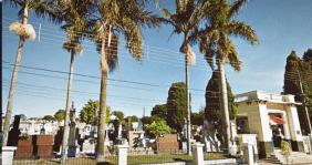 Floricultura Cemitério Jd. da Serra Bragança Paulista - SP
