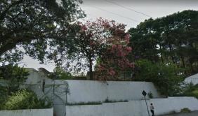 Floricultura Cemitério Municipal de Braúna – SP