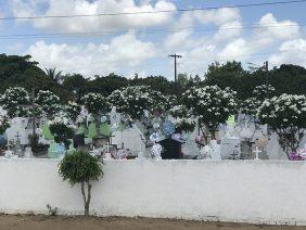 Floricultura Cemitério Municipal de Tapauá - AM