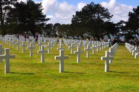 Floricultura Cemitério Municipal de Normandia - RR