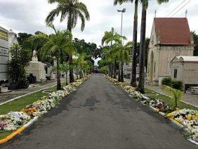 Floricultura Cemitério Municipal de Pacaraima – RR