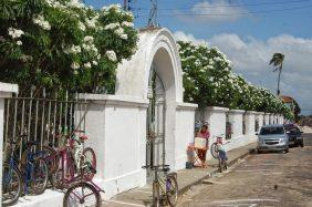 Floricultura Cemitério Municipal de Augusto Corrêa – PA