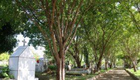 Floricultura Cemitério Municipal de Breu Branco – PA