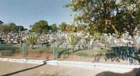 Floricultura Cemitério Municipal de Cametá- PA