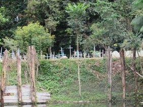 Floricultura Cemitério Municipal de Curralinho - PA