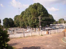 Floricultura Cemitério Municipal de Moju – PA