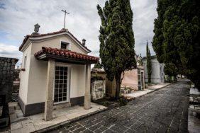 Floricultura Cemitério Municipal de Rio Maria – PA