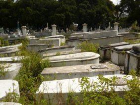 Floricultura Cemitério Municipal de Santa Izabel do Pará – PA