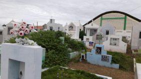Floricultura Cemitério Municipal Mombaça – CE