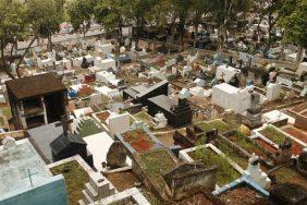 Floricultura Cemitério de Brotas – Santa Isabel – SP