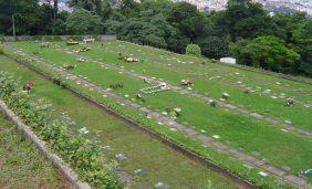Floricultura Cemitério Jardim Horto Florestal – SP