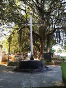 Floricultura Cemitério Municipal de Queimados – RJ