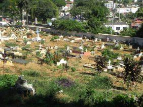 Floricultura Cemitério Castanheiro – RJ