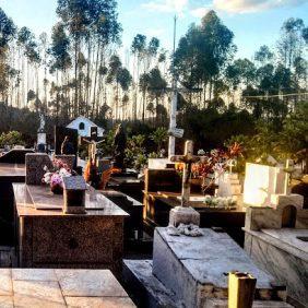 Floricultura Cemitério Municipal São Francisco de Paula Trajano de Moraes – RJ