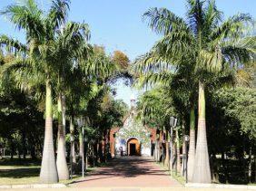 Floricultura Cemitério São José – MG