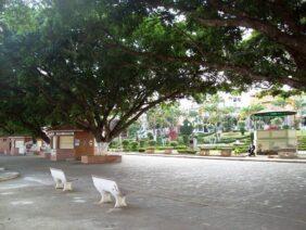 Floricultura Cemitério Municipal De Descoberto – MG