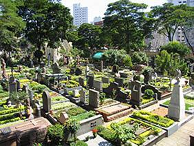 Floricultura Cemitério Municipal de Campina do Monte Alegre – SP