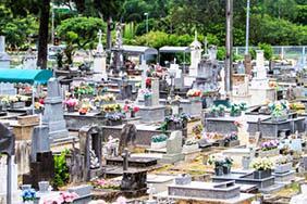 Floricultura Cemitério Municipal de Cruzália  – SP