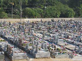 Floricultura Cemitério Municipal de Itapirapuã Paulista – SP