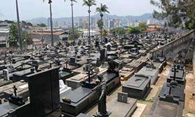 Floricultura Cemitério Municipal de Monte Alegre do Sul – SP