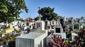 Floricultura Cemitério Municipal de Nazaré Paulista SP