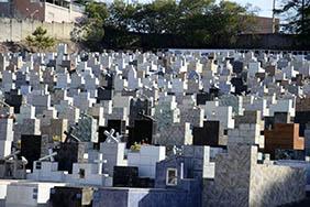 Floricultura Cemitério Municipal de Palestina – SP