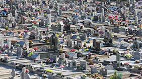 Floricultura Cemitério Municipal de Palmares Paulista – SP