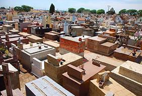 Floricultura Cemitério Municipal de Pedrinhas Paulista – SP
