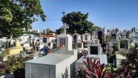 Floricultura Cemitério Municipal Ribeirão Corrente – SP