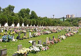 Floricultura Cemitério Municipal São Benedito Guararema – SP